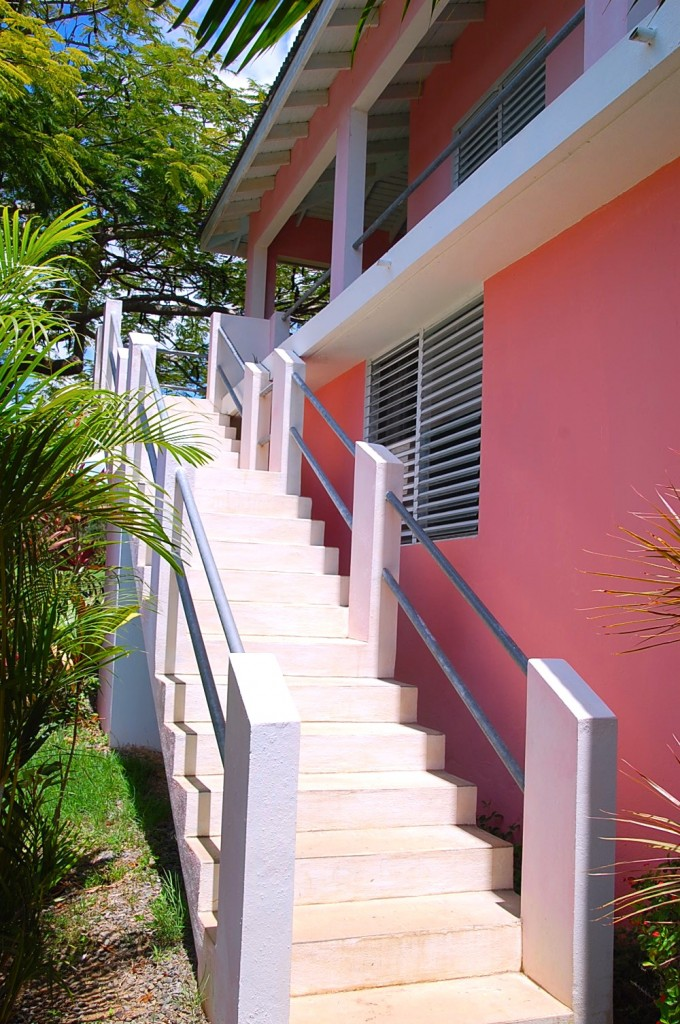 External poured cement stairs to the loft from the yard. The bright pink walls of the house are on the right, with palm trees on the left.